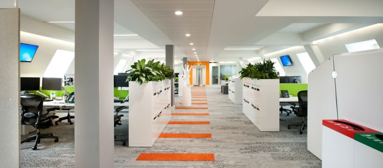 Open plan office design with plants and orange striped carpet