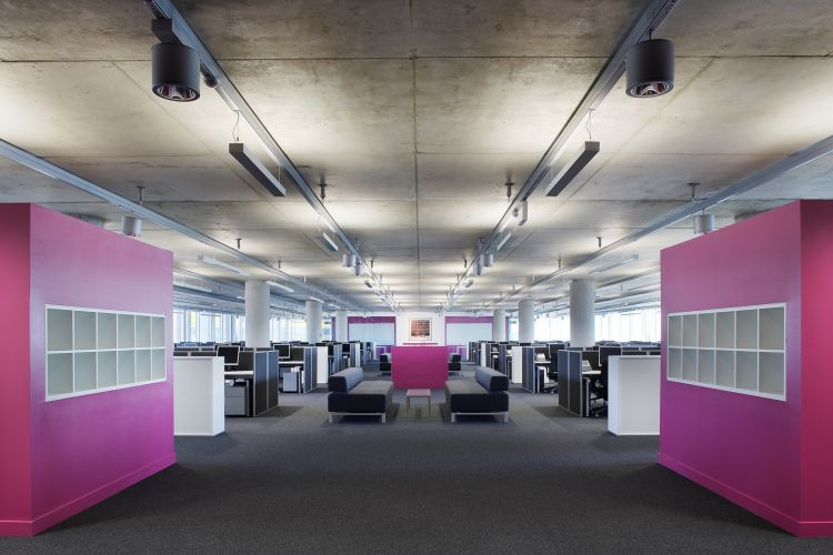 Open plan office fit out and workstations with pink highlights