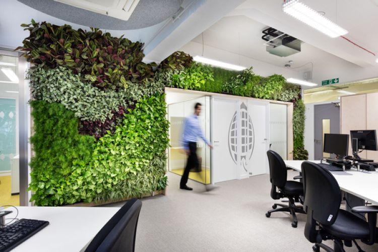 Office designed by Morgan Lovell